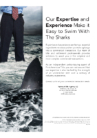 Commercial Transactions – Easy to Swim with the Sharks